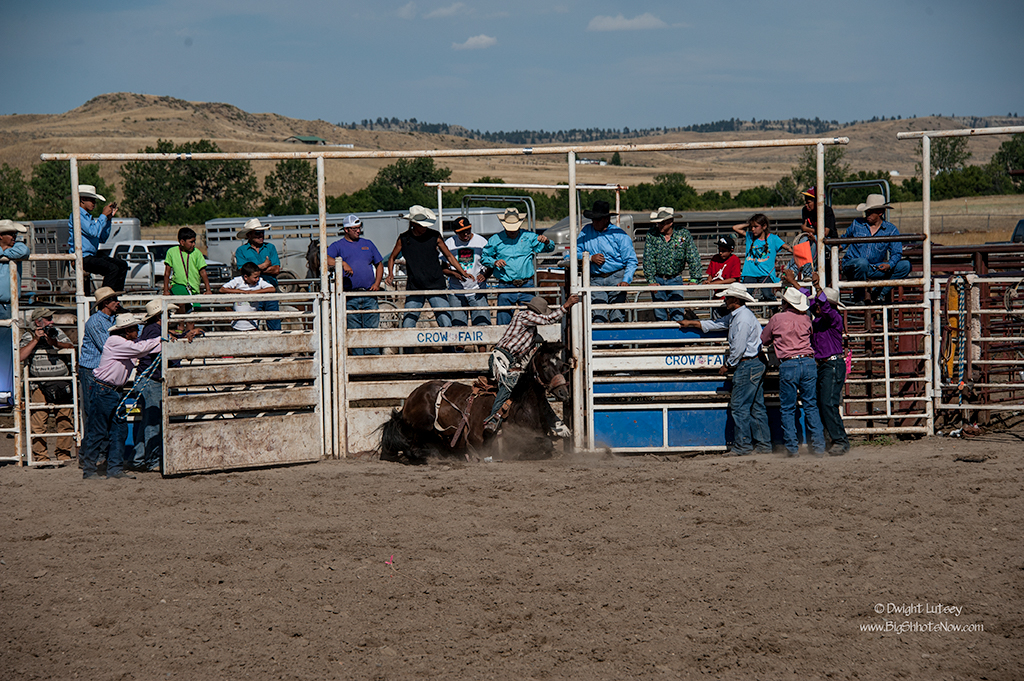 CrowRodeo4058