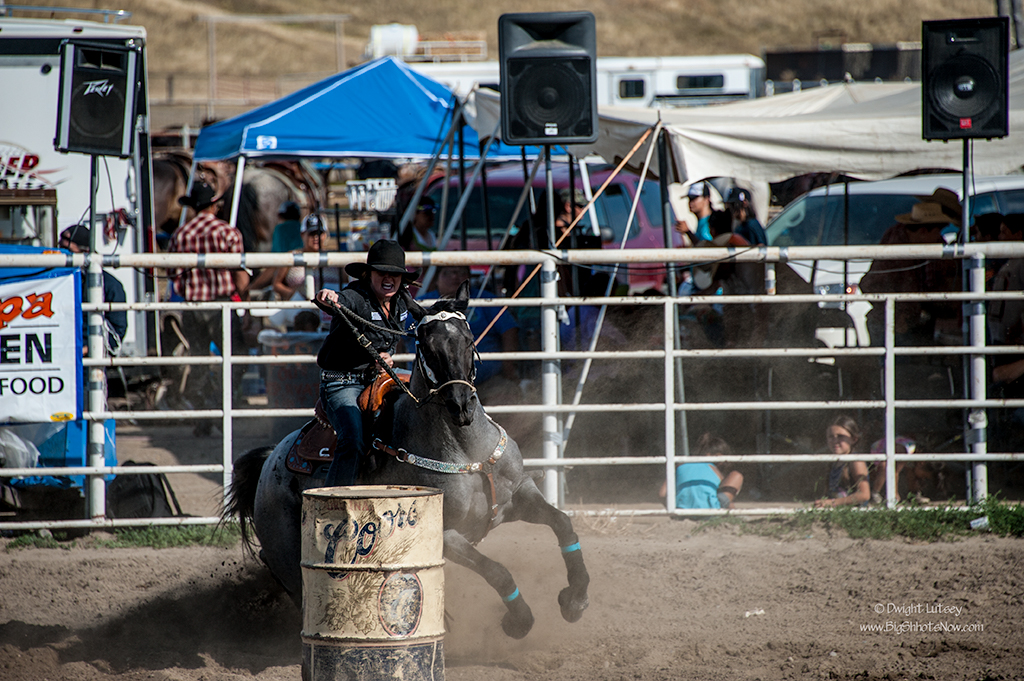 CrowRodeo4217