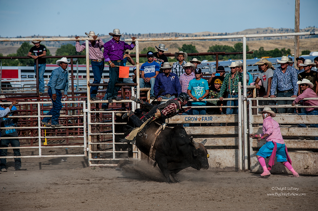CrowRodeo4326