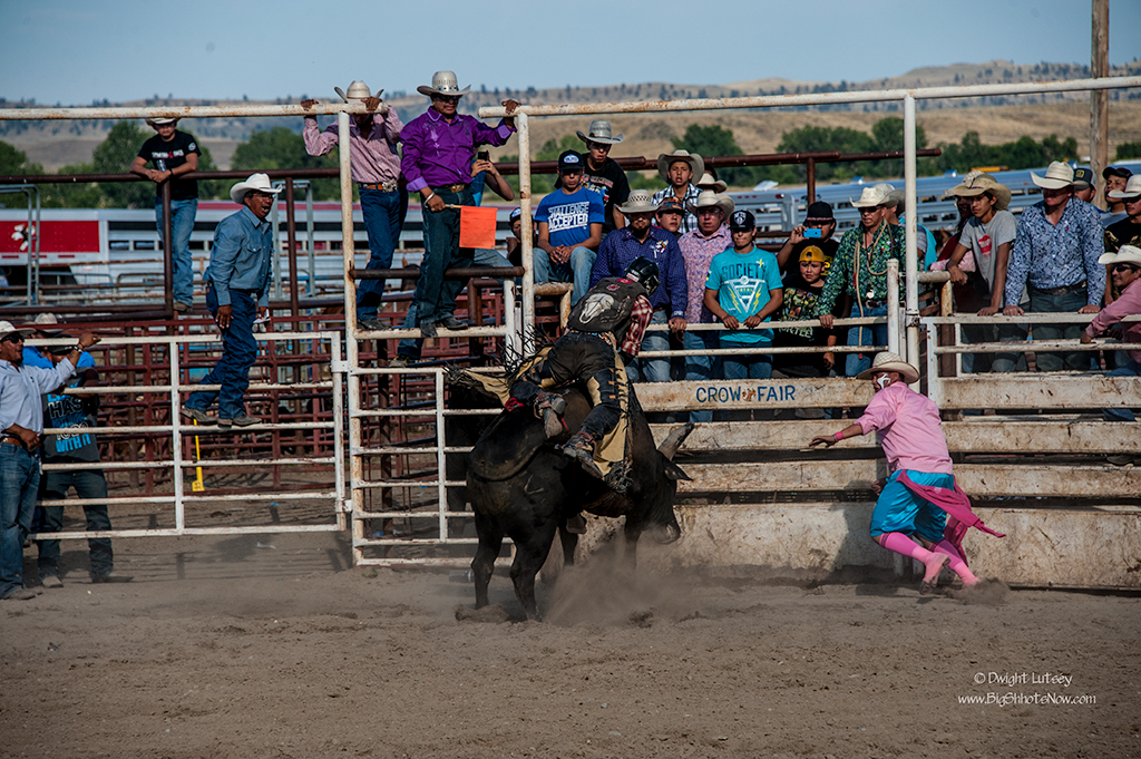 CrowRodeo4327