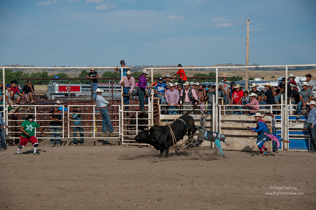 CrowRodeo4357
