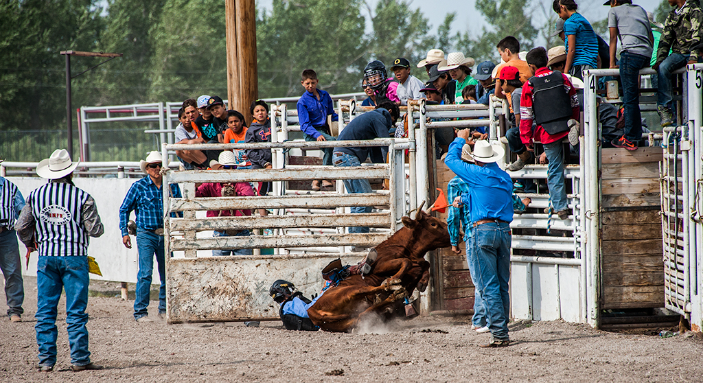 2015-07-24Rodeo4856