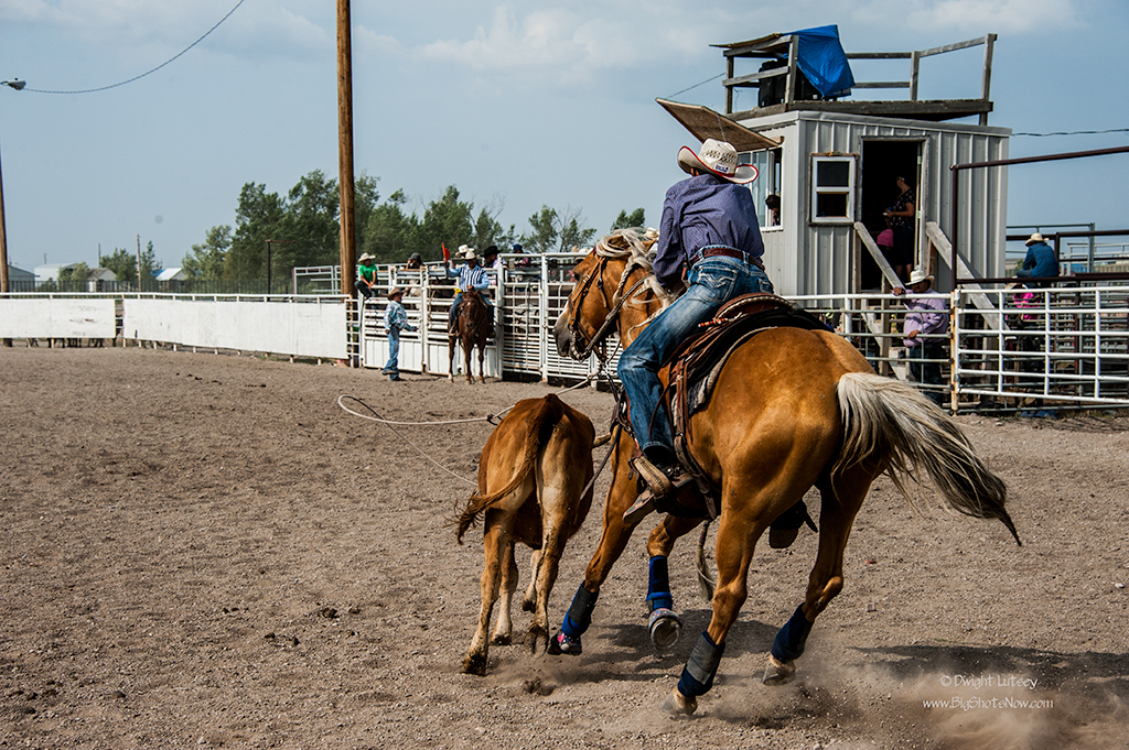 2015-07-24Rodeo5044