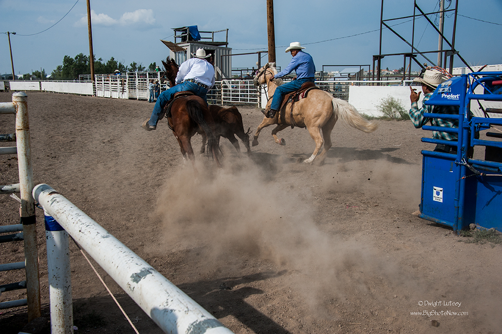 2015-07-24Rodeo5305