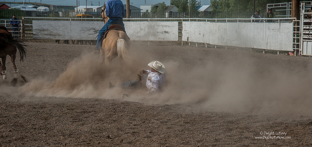 2015-07-24Rodeo5320