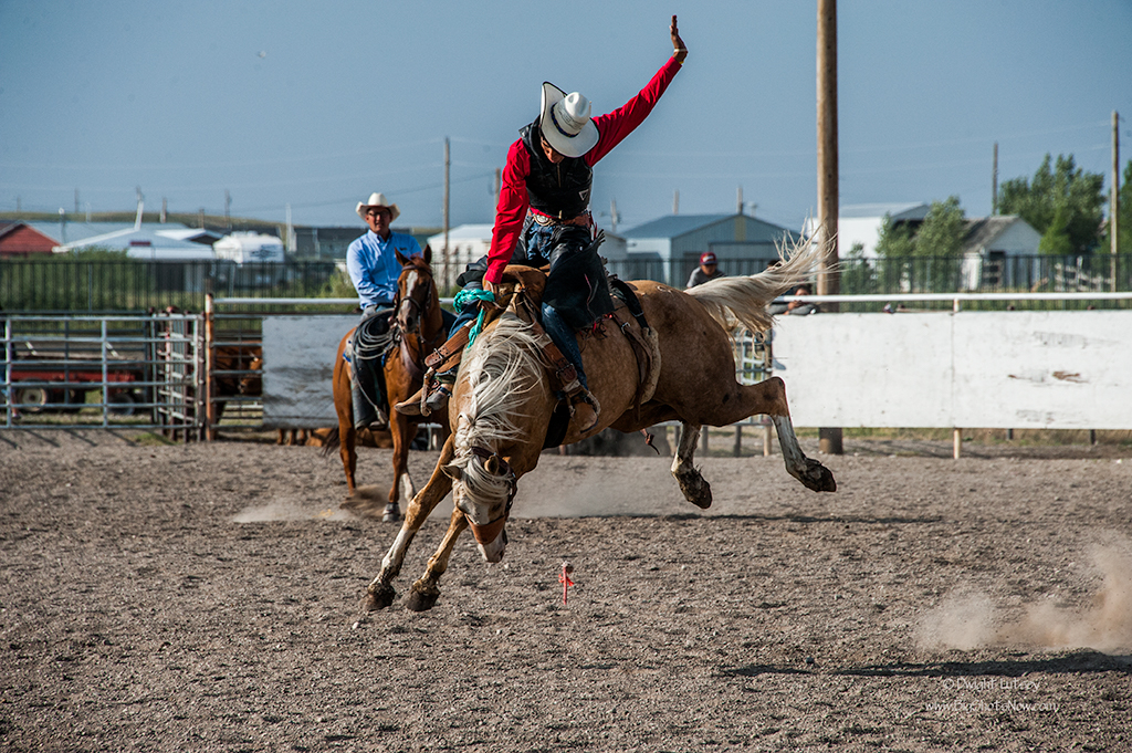 2015-07-24Rodeo5832
