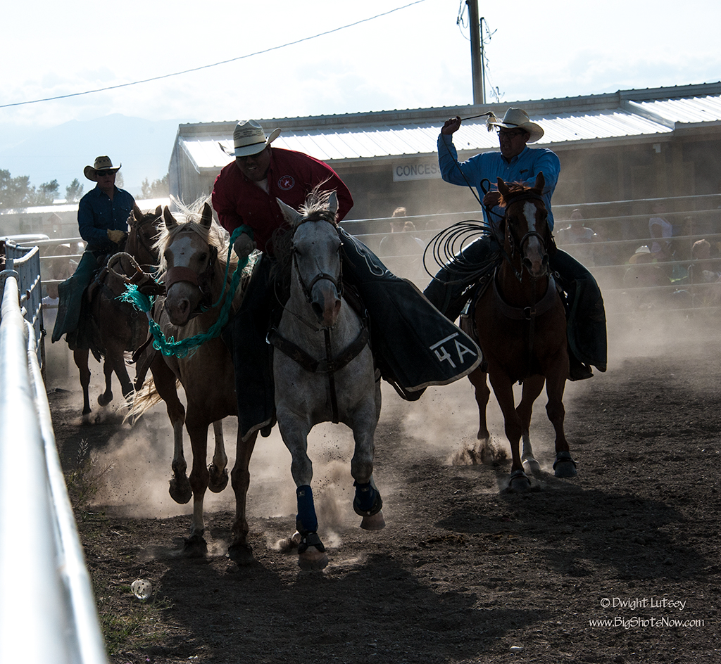 2015-07-24Rodeo5853