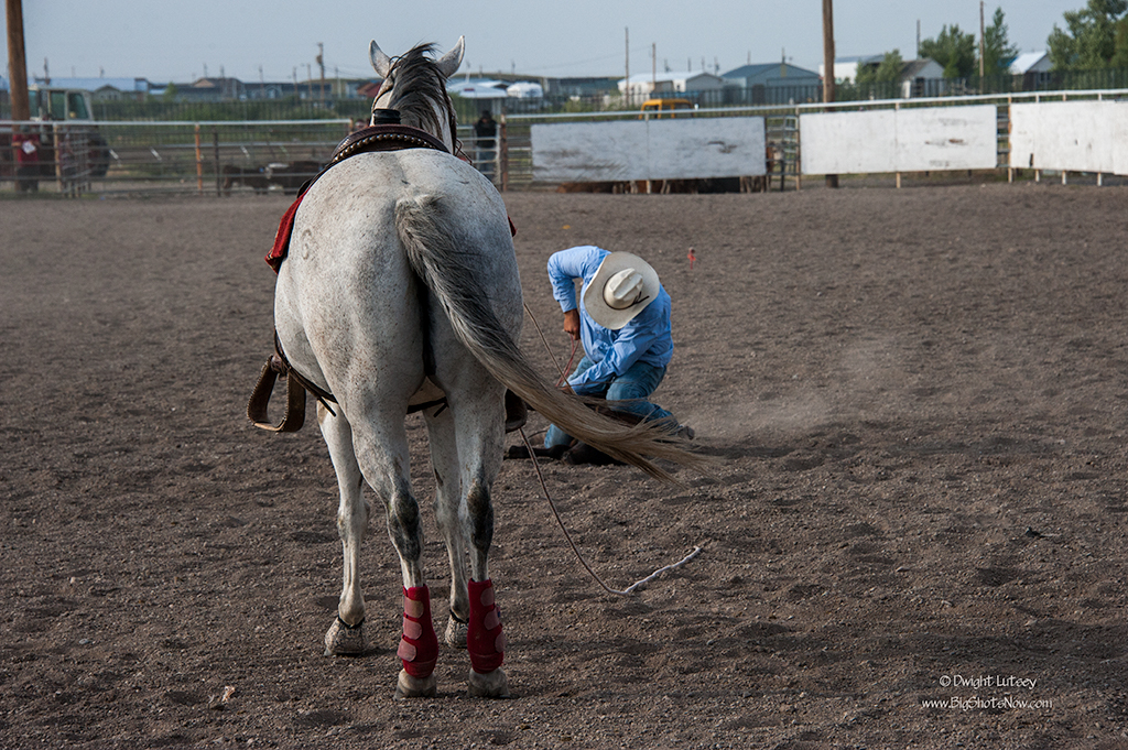 2015-07-24Rodeo6014