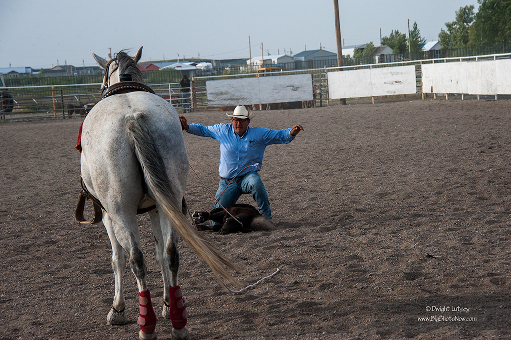 2015-07-24Rodeo6018