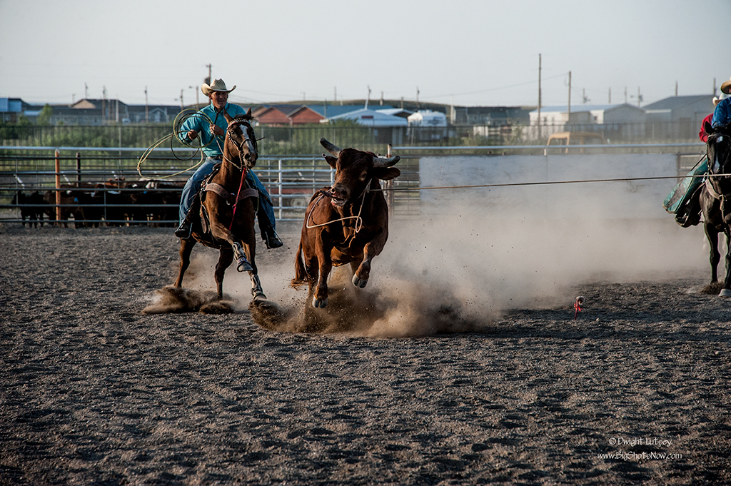 2015-07-24Rodeo6615