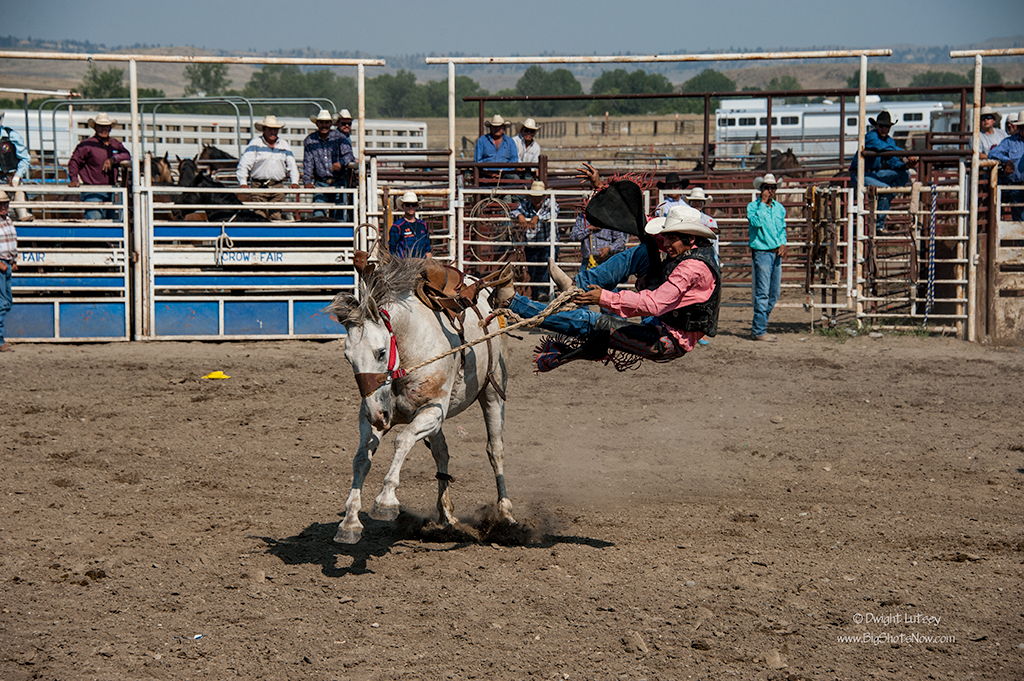 2015-09-02CrowFairRodeo9275