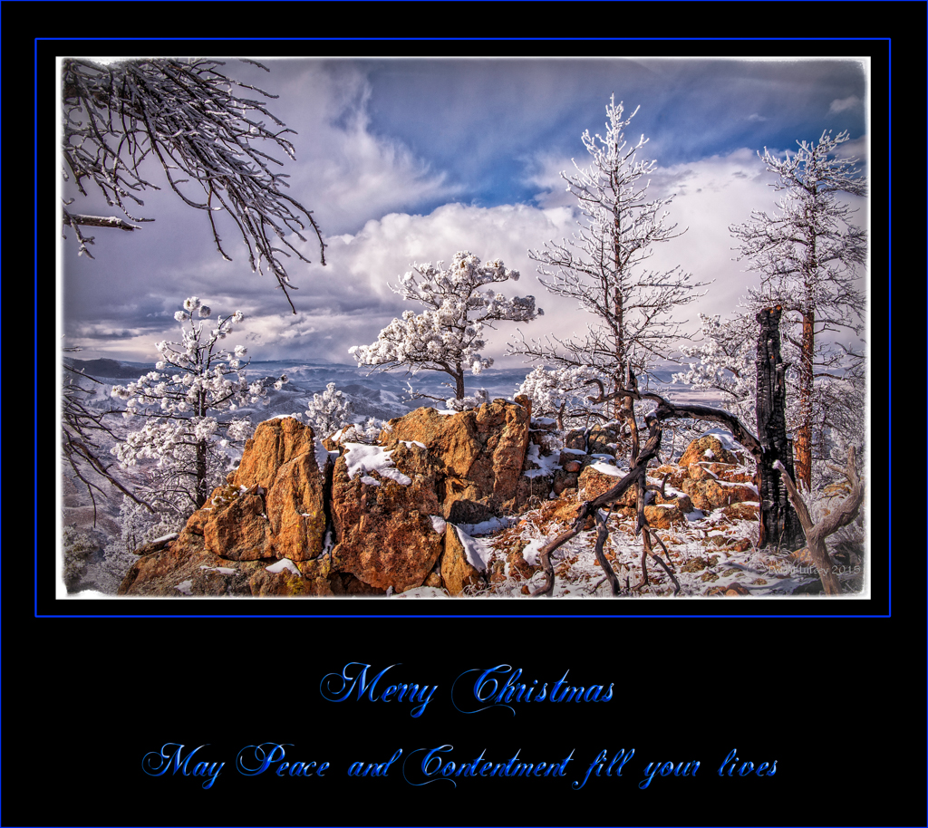 2015-12-25ChristmasCard
